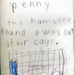 pennythehamster002